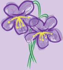 Pensive Weeds - Pennington, New Jersey Florist
